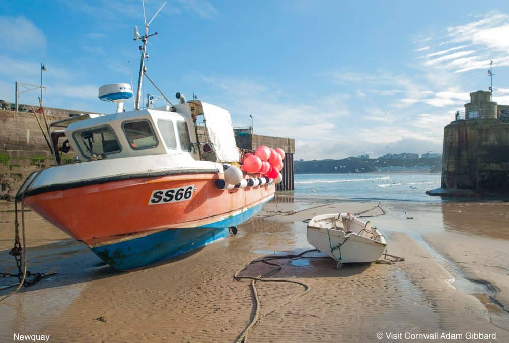 Sea Fishing Trips In Newquay