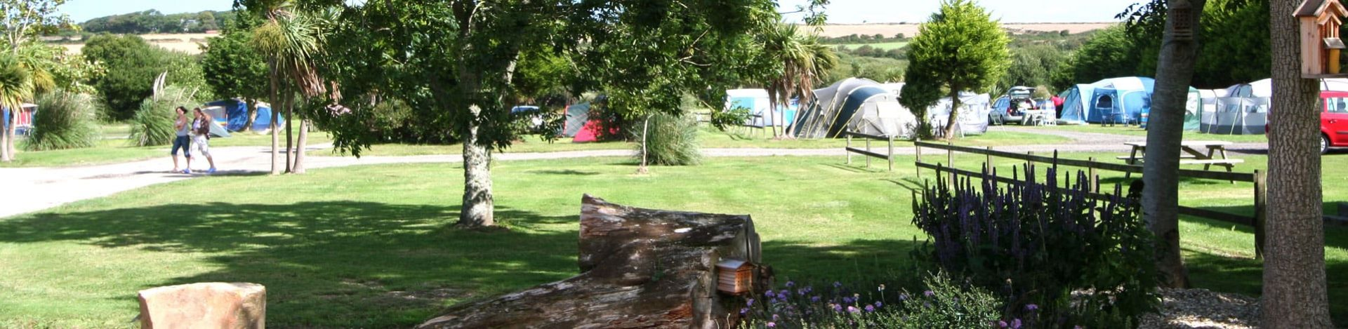 Holiday park campervan pitches