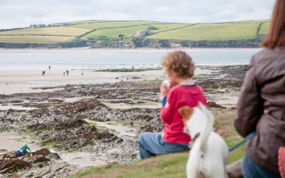 Cornish Spots to Forage Your Own Seafood